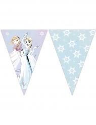 Ghirlanda di bandierine lilla Frozen™