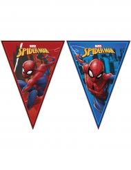 Ghirlanda di bandierine di Spiderman™