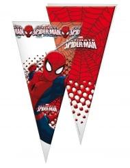 10 sacchetti triangolari Spiderman™