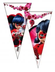 6 sacchetti per festa Ladybug™