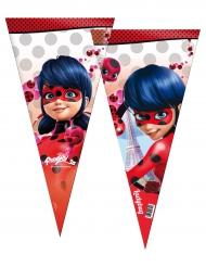6 maxi sacchetti per festa Ladybug™
