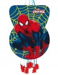 Pignatta Spiderman™ in cartone