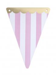 5 gagliardetti circo bordo oro e righe rosa