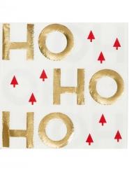 16 tovaglioli di carta Ho Ho Ho natalizi