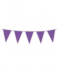 Ghirlanda con mini bandierine viola
