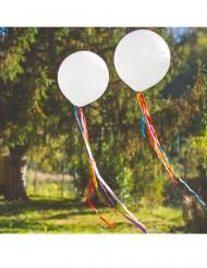 Palloncino bianchi con nastri multicolore