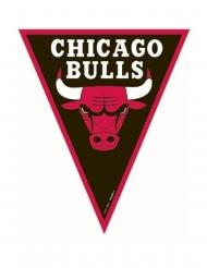 Ghirlanda di bandierine Chicago Bulls™