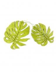 2 foglie tropicali in legno verde