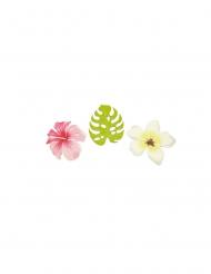 9 coriandoli in legno fiori e foglie tropicali