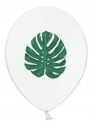 6 palloncini in lattice bianchi con foglia tropicale