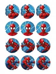 12 decorazioni per biscotti Spiderman™