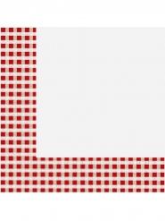 20 tovaglioli di carta a quadretti rossi e bianchi