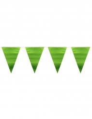 Ghirlanda con bandierine verde metallizzato