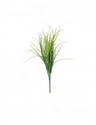 Bouquet di erba di campo
