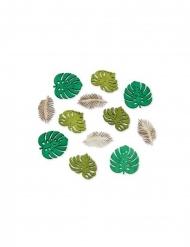 12 mini foglie tropicali in legno