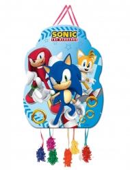 Piccola pignatta Sonic