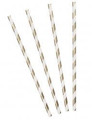 20 cannucce in cartone righe oro