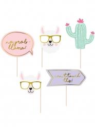 Kit photobooth 5 accessori lama pastello