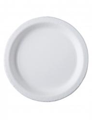20 piatti in cartone bianco biodegradabili 26 cm