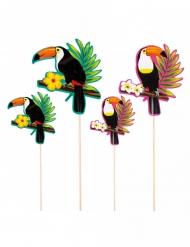 4 stecchini decorativi per cocktail tucano