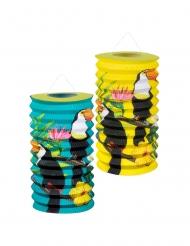 2 lanterne di carta tucano