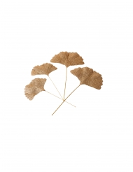 4 foglie di ginkgo con paillettes oro