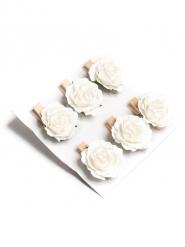 6 mini rose bianche su molletta