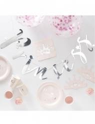 Kit decorazioni di compleanno principessa 70 pezzi