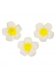 6 fiori di tiaré artificiali