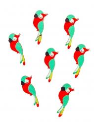 12 coriandoli in legno adesivi pappagallo
