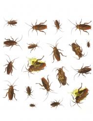 20 Stickers scarafaggio