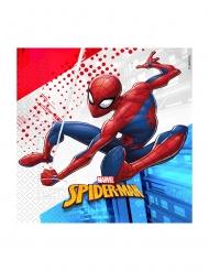 20 Tovaglioli in carta compostabile Spiderman™ 33 x 33 cm