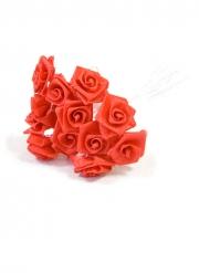 48 mini rose satinate rosse