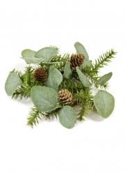 Centrotavola con pigne e eucalipto