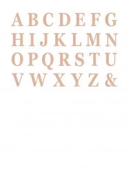 48 lettere adesive oro rosa