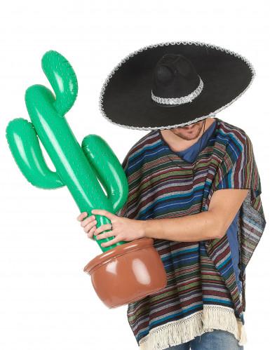 Cactus da gonfiare-1