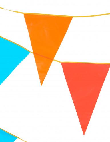 Maxi ghirlanda di gagliardetti multicolor da 10 m-1