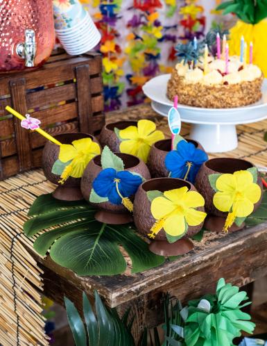 Coppa Hawaii a forma di noce di cocco-1