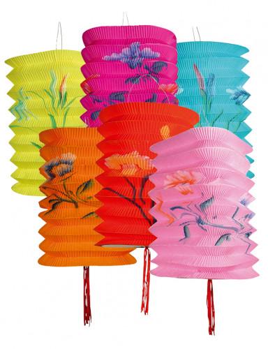 Confezione da 12 lanterne cinesi colorate