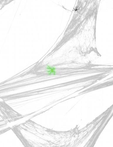 Decorazione ragnatela bianca con ragni per Halloween-2