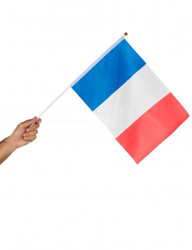 Bandiera della Francia-1