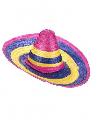 Sombrero con righe multicolor