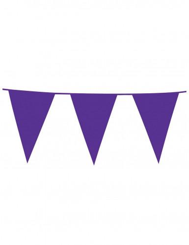 Ghirlanda con bandiere viola