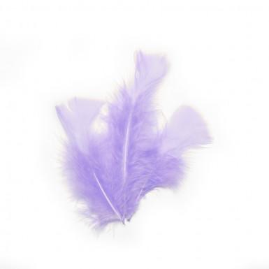 20 piume decorative lilla