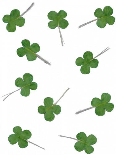 12 quadrifogli verdi