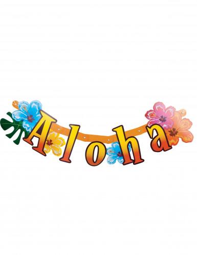 Banner pieghevole Aloha per party
