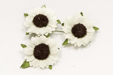 12 fiori di campo bianchi