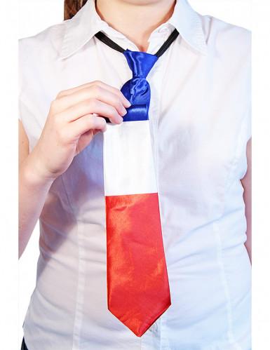 Cravatta con i colori della bandiera francese-1