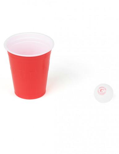 Il gioco del beer pong-1