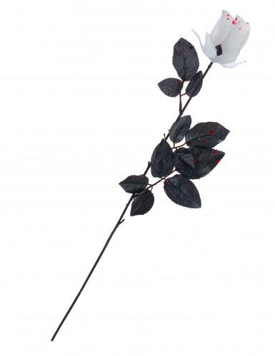 Rosa Halloween insanguinata